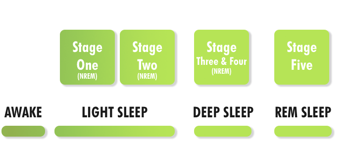 The different stages of sleep - Stages image